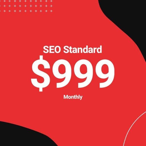 Anaheim Web Agency - SEO Standard