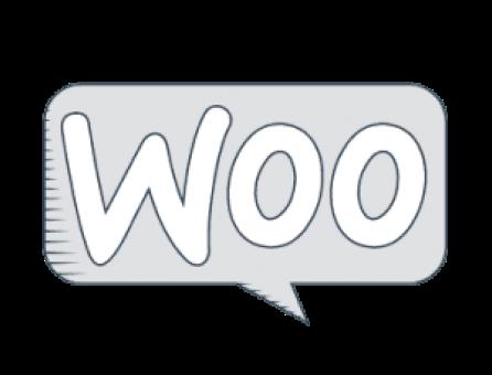 Anaheim Web Agency - woocommerce ecommerce