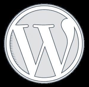 Anaheim Web Agency- WordPress Customization